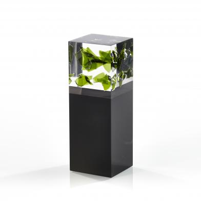 M-Qube (creative gifts)